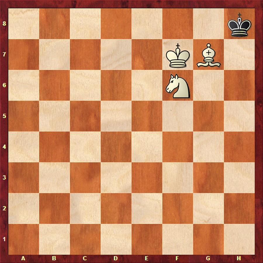 Шахматы как поставить мат картинки